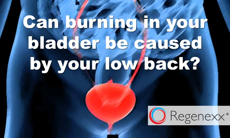 Interstitial Cystitis? Your Bladder Pain May Be Your Low Back