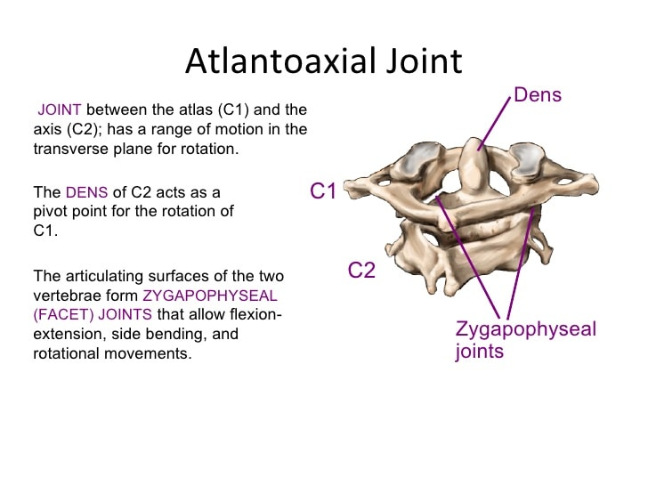 C1-C2 joint