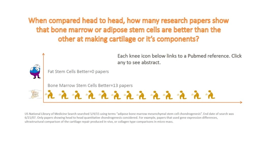 essay on stem cell research pros