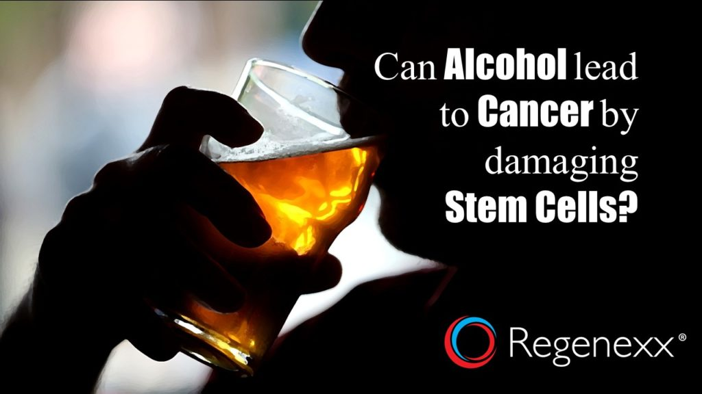 alcohol and stem cells
