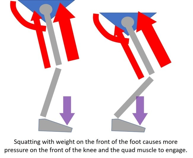 squat to protect knee